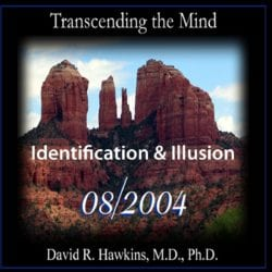 Identification and Illusion Aug 2004 dvd